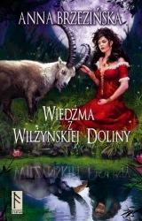 Wiedźma z Wilżyńskiej Doliny (2010) - okładka
